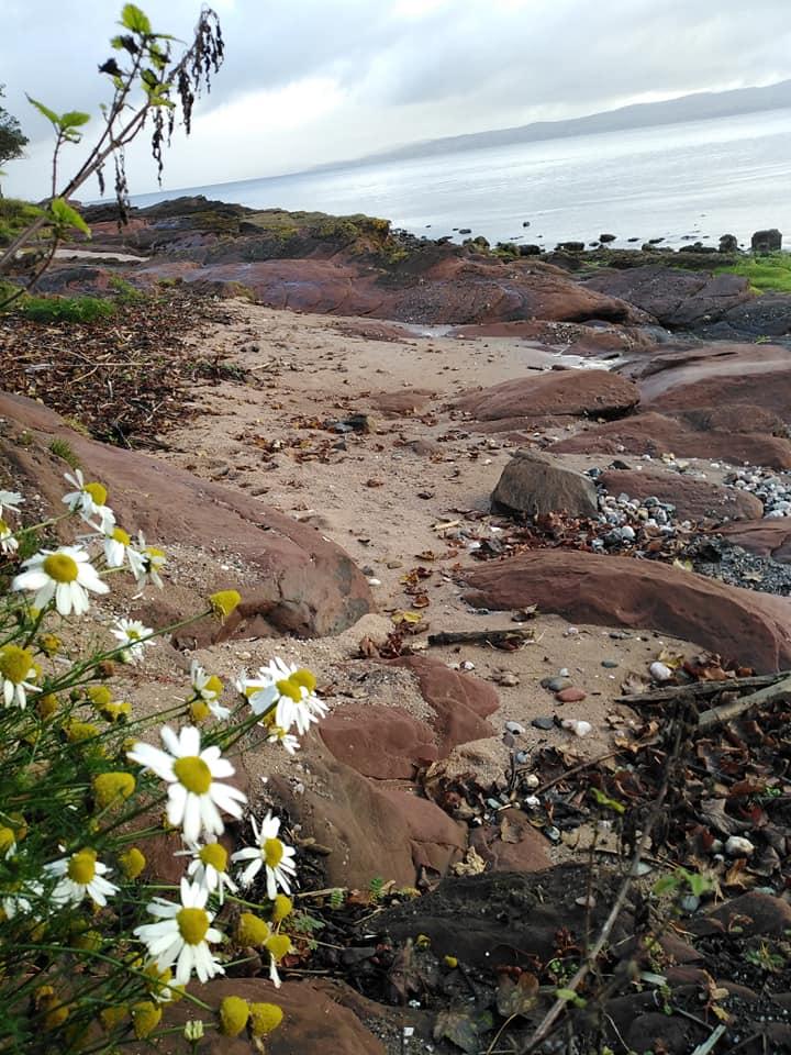 Isle-of-Bute-beach